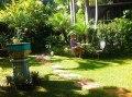 cocos garden